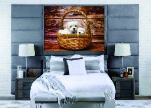 Puppies in a Basket Canvas Print - 1 Piece