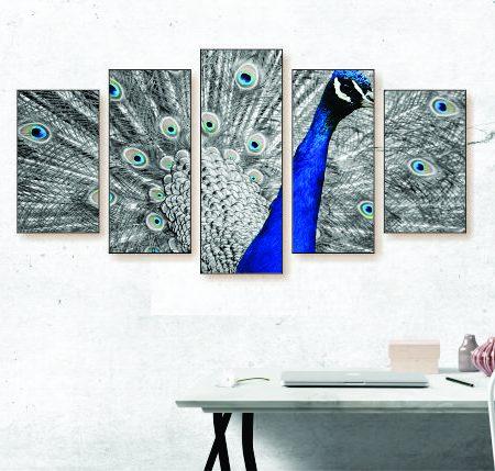 Black & White Peacock Canvas Print