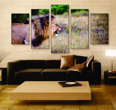 Fierce Lion Canvas Print