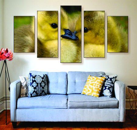 Loving Ducks Canvas Print