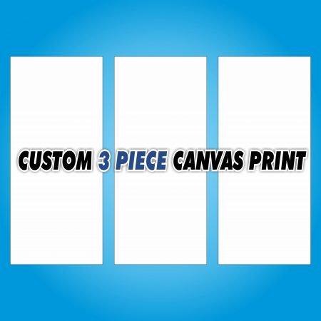 Custom 3 Piece Canvas Print