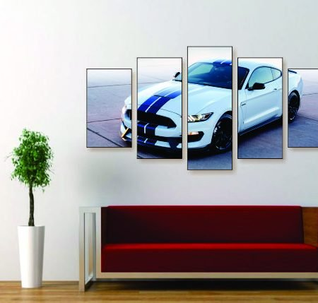 GT350 Mustang Canvas Print